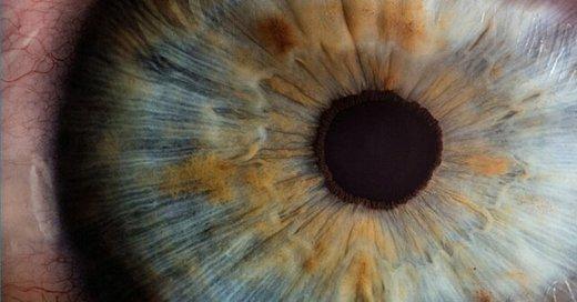 ۴ نوآوری پزشکی که شاید نابینایی را درمان کنند