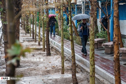 بارش زمستانی باران در تهران