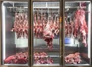 بازار گوشت در آستانه تعادل/ عرضه گوشت افزایش مییابد