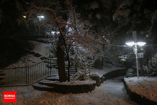 بارش اولین برف زمستانی در تهران