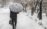 جزییات بارش برف و باران از این هفته
