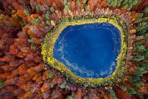 منظره هوایی از یک دریاچه در جنگل در Kashubia لهستان