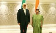 فیلم | دیدار ظریف با همتای هندی