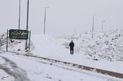 تصاویر | بارش سنگین برف در شهرکرد