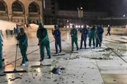 فیلم | ویدئوی منتشرشده از حمله ملخها به مسجدالحرام