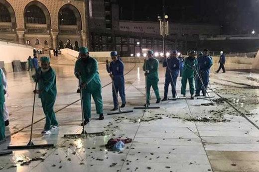 فیلم   ویدئوی منتشرشده از حمله ملخها به مسجدالحرام