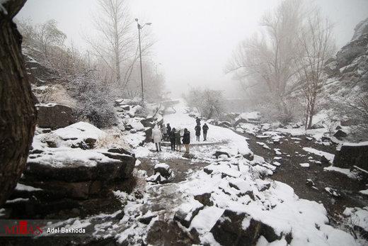 آلودگی هوا,بارش برف باران,سازمان هواشناسی