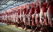 ۱۵ درصد گوشت قرمز و شیر مازندران در بابلسر تولید میشود