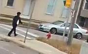 فیلم | لحظه حساس نجات دختربچه سرگردان توسط راننده اتوبوس