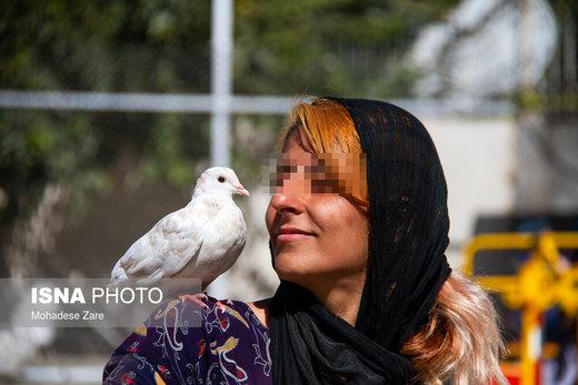 مرکز درمان اقامت اجباری زنان مشهد در راستای ارائه خدمات درمانی و کاهش آسیبهای ناشی از اعتیاد زنان(معتاد و متجاهر) تحت پوشش و نظارت سازمان بهزیستی در حال فعالیت است