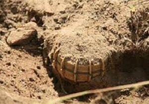 مین باقیمانده از جنگ، ۲ سرباز ارتش در نقطه صفر مرزی را شهید کرد