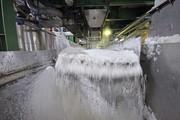 ایران تا ۲ سال آینده در تولید شکر خودکفا میشود