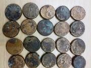آغاز مطالعه سکههای کشف شده در محله شنب غازان تبریز