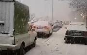 فیلم | بلایی که برف امروز به سر مردم کرج آورد!