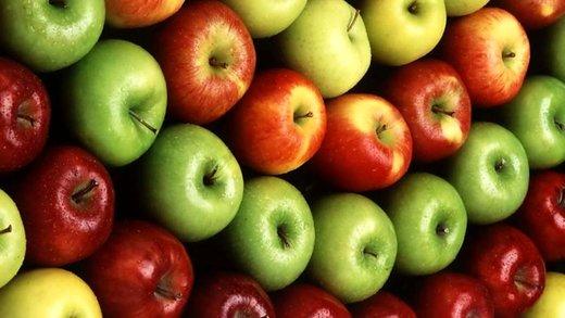 ۱۰۰ هزار تن سیب درختی در سردخانههای آذربایجانغربی منتظر صدور مجوز صادرات