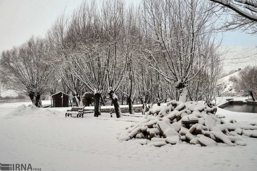 بارش برف در منطقه سراب هنام از توابع شهرستان سلسله