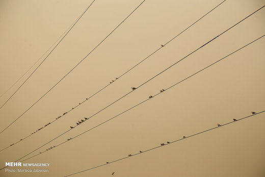 گرد و خاک در آسمان اهواز