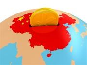 کاهش چشمگیر رشد اقتصادی در چین/ اژدهای زرد تحت تاثیر جنگ تجاری با آمریکا