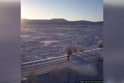 فیلم | مسابقه دو در دمای 60- درجه