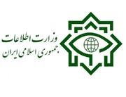 معاون وزیر اطلاعات: قصد دشمن تبدیل کردن ایران به وضعیت سوریه و عراق است