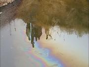 بررسی آلودگی آب سرخون در شورای عالی  سلامت کشور