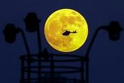 تصاویر | ماه خونین در آسمان