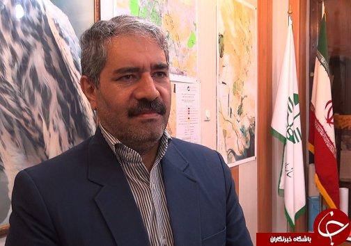 قاچاق زهر عقرب، تجارتی به نفع سودجویان به زیان خوزستان