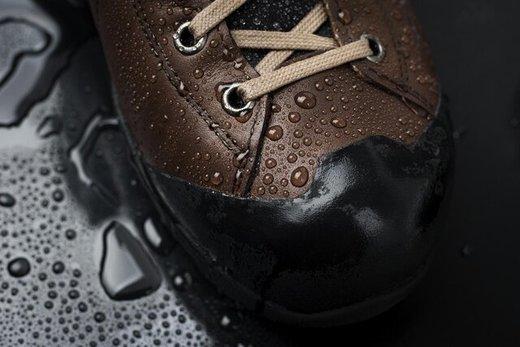 تولید کفش جدید توسط یک شرکت ایرانی/ فروش 250میلیون تومانی تا امروز