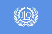 گزارش کمیسیون جهانی آینده کار