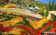 آب گرم دنیزلی، شفا در دل طبیعت