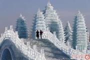 بزرگترین فستیوال برف و یخ ۲۰۱۹ در چین