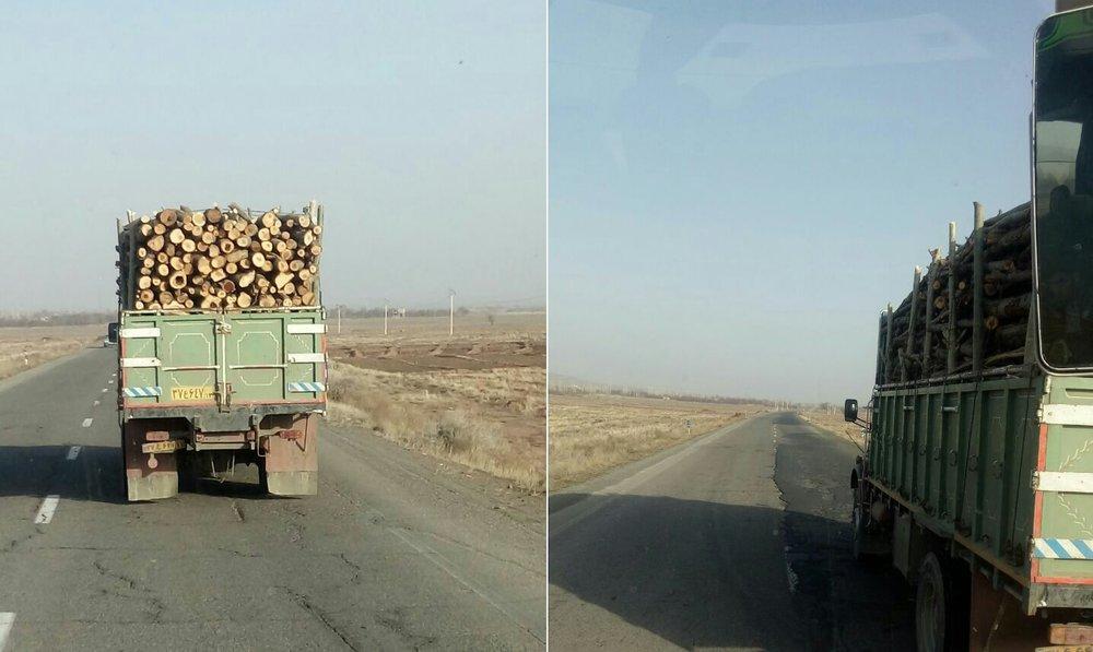 قاچاق چوب از سلماس