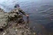فیلم | تنها رودخانهای که با دست خالی از آن ماهی میگیرید