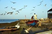 تصاویر | ماهیگیری در نقطه صفر مرزی