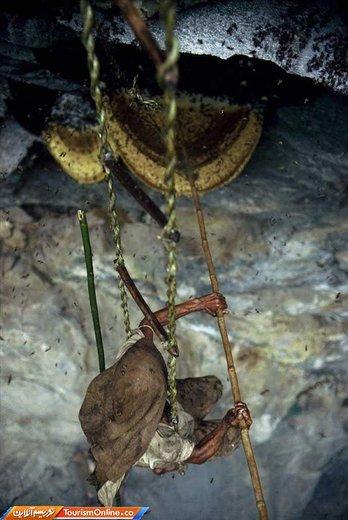 برداشت عسل در دامنه های هیمالیا