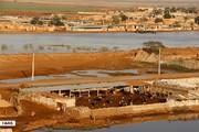 سیل خط آب شهر پلدختر را قطع کرد