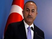 وزیر امورخارجه ترکیه: موضوع نشست سهجانبه ایران، روسیه و ترکیه در سوچی خروج آمریکاییها از سوریه است