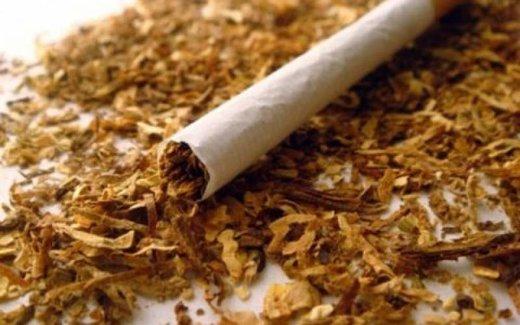 مصرف توتون در ایران ۷ برابر شده است/ مالیات سیگار در ایران کم است