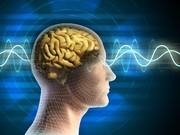 محققان ایرانی موفق به طراحی و ساخت واسط مغز-ماشین شدند