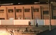 فیلم | قمهکشی و تیراندازی شبانه اوباش در کرج