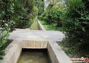 پیشنهاد رئیس کمیته سلامت شورای شهر تهران: برای حفظ باغهای تهران حکم حکومتی لازم است