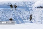 برفیک متری در ارتفاعات گلستان