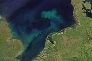 تغییر رنگ اقیانوسها تا پایان قرن ۲۱