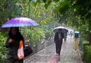 پایتخت سردتر میشود/ آغاز موج جدید بارشها