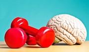 چه عواملی موجب ضعف حافظه میشوند؟/ اینفوگرافیک