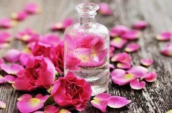 خواص گلاب,گلاب,خواص گلاب برای چشم,خواص درمانی گلاب