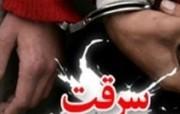 دستگیری سارقین حرفه ای منزل و مغازه در دورود