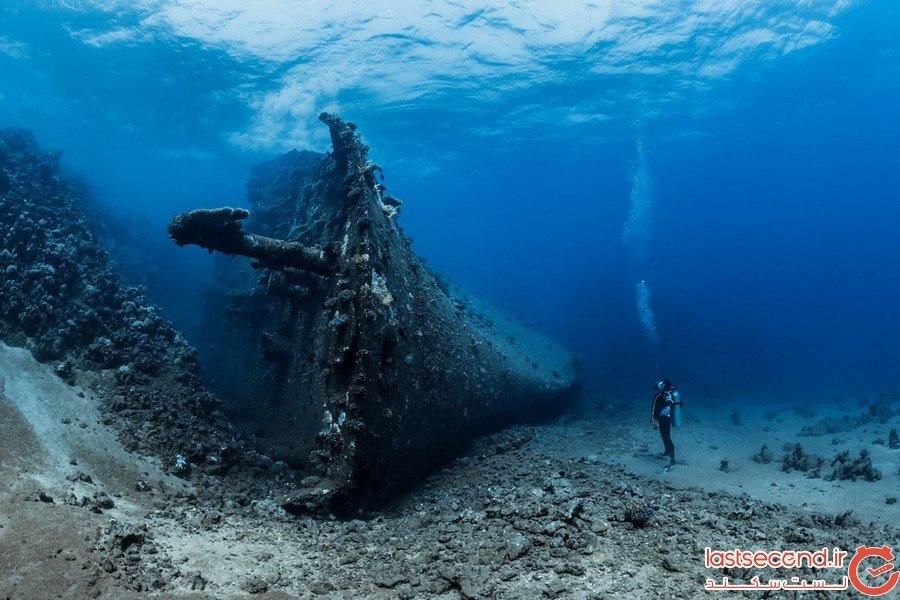 مسابقه عکاسی از زیر آب اقیانوس