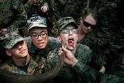 تصاویر | سربازانی که برای زندهماندن، خون مار میخورند