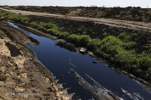 نابودی طبیعت منطقه حفاظت شده میشداغ خوزستان به بهانه مقابله با ریزگردها